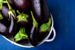 Fresh eggplant in grey basket on blue wooden table.Rustic background. Top view. Copy space. Vegan vegetable. Stock Photos