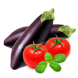 Fresh eggplant, red tomatoes and basil Stock Images