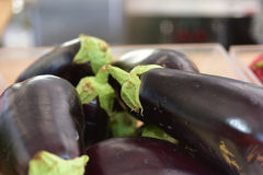 Fresh eggplant on the table of baker Royalty Free Stock Photos