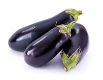 Fresh eggplant Royalty Free Stock Photos
