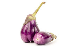 Fresh eggplant. On white background Royalty Free Stock Images