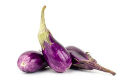 Fresh eggplant Stock Image