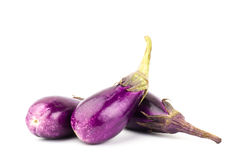 Fresh eggplant. On white background Royalty Free Stock Photography