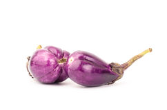 Fresh eggplant. On white background Royalty Free Stock Photos