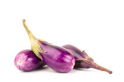 Fresh eggplant Royalty Free Stock Photography