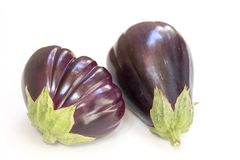 Fresh eggplant. Eggplant on a white background Stock Image