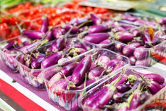 Fresh eggplants, aubergine vegetables on street market in Proven. Ce, France Royalty Free Stock Photos