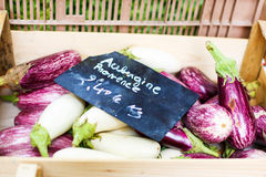 Fresh eggplants, aubergine vegetables on street market in Proven. Ce, France Stock Photography