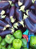 Fresh Eggplants and Capsicums Stock Images