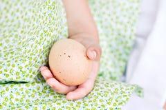 Fresh eggs. Macro of a little girl\'s hand as she gathers eggs Stock Photos