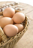 Fresh eggs Royalty Free Stock Image