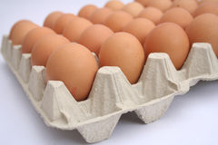Fresh eggs. Some fresh brown eggs in a box Stock Image