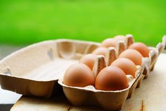 Fresh eggs. Some fresh eggs in a box Stock Photography