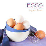 Fresh eggs. Stock Photography