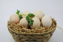 Fresh Eggs in  bamboo basket with Green leaf. Fresh Eggs in bamboo basket of straw isolated on white backgrond Royalty Free Stock Photo