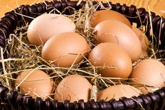 Fresh eggs in the basket Royalty Free Stock Photography
