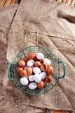 Fresh eggs Stock Photos