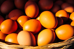 Fresh eggs in the basket for sale in the market Royalty Free Stock Photo