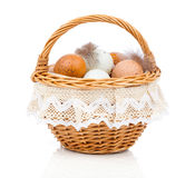Fresh eggs in a basket Stock Photography