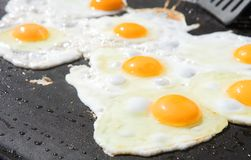 Fresh eggs being fried Stock Image