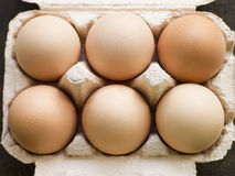 Fresh Eggs In Box Stock Images
