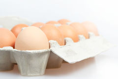Fresh eggs in carton box Royalty Free Stock Photo
