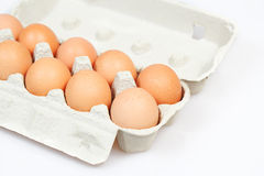 Fresh eggs in carton box. On white background Royalty Free Stock Image
