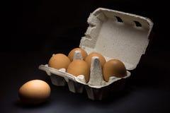 Fresh eggs in carton dark photography Royalty Free Stock Photography