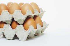 Fresh eggs in cartons Royalty Free Stock Photos