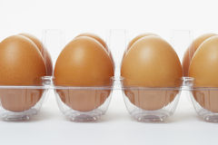 Fresh eggs in clear plastic tray Royalty Free Stock Photo