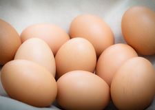 Fresh eggs on the cloth Stock Images