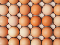 Eggs. Fresh eggs in container, can be used as a background Stock Photography