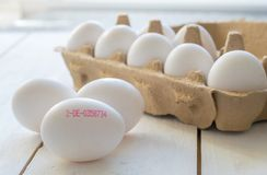 Fresh eggs with control number Stock Photography