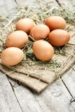 Fresh eggs for Easter royalty free stock photography
