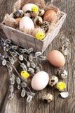 Fresh eggs. Easter theme Stock Photography