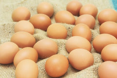 Fresh eggs from farm Stock Image