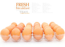 Fresh eggs Stock Photos