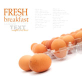 Fresh eggs Royalty Free Stock Photos