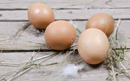 Fresh eggs from the farm Royalty Free Stock Images