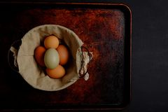Fresh eggs, green and brown, wire basket, on dark background Stock Photos