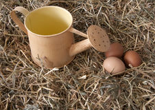 Fresh eggs in the hay. In the village Stock Image