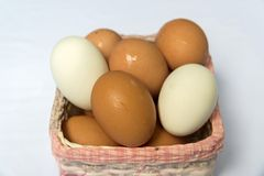 Fresh eggs. Hen eggs and duck eggs in the basket Royalty Free Stock Image