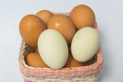 Fresh eggs. Fresh hen eggs and duck eggs are useful for everyone Stock Image