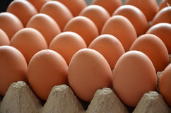 Fresh eggs in a market Stock Photos