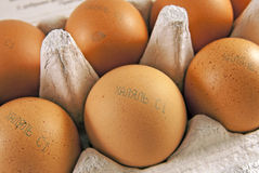 Fresh eggs with marking halal in russian Royalty Free Stock Photo