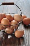 Fresh eggs Stock Image