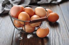 Fresh eggs Stock Photography
