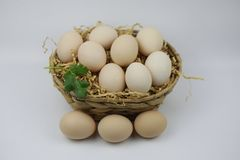 Fresh Eggs in and out of bamboo basket. Of straw and green leaf  isolated on white backgrond Stock Photo