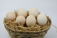 Fresh Eggs in and out of bamboo basket. Of straw isolated on white backgrond Stock Image
