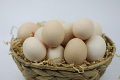 Fresh Eggs in and out of bamboo basket. Of straw  on white backgrond Stock Image